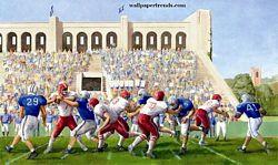 Football Stadium MuralChair Rail Wall MuralIN2676MFootball Stadium MuralChair Rail Wall MuralIN2676M
