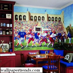 Football Stadium Mural Chair Rail Wall Mural IN2676MRoom Shot