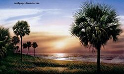 Palmetto Sunrise Mural Chair Rail Wall Mural RA0134M Palmetto Sunrise Mural Chair Rail Wall Mural RA0134M