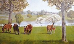 Horse Farm Mural Chair Rail Wall Mural RA0197M Horse Farm Mural Chair Rail Wall Mural RA0197M