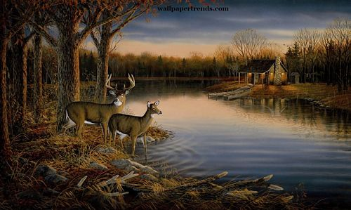 Deer Lodge wall wallpaper mural