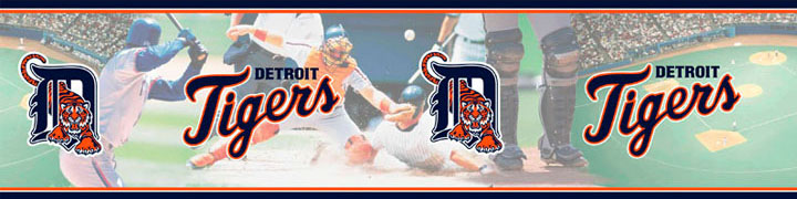 Detroit Tigers Wall Borders 5815400